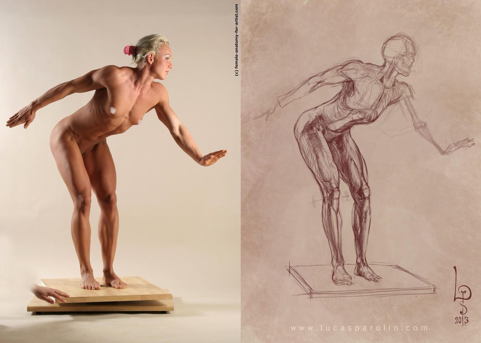 [Image: bones+musculos_blog.jpg]