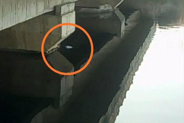 dead-body-seen-fatehpur-deeg-village-faridabad-agra-nahar-news