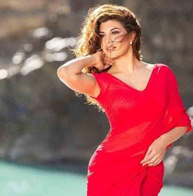 Jacqueline Fernandez Career