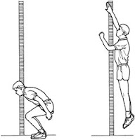 Vertical Jumps