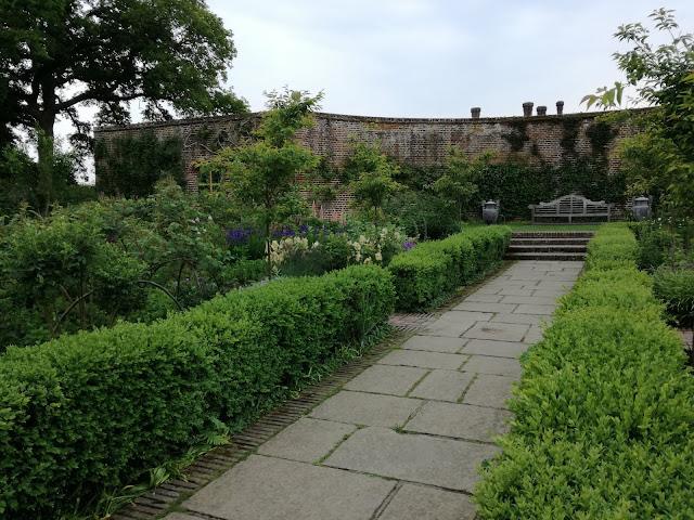 Rose Garden, bukszpanowy żywopłot