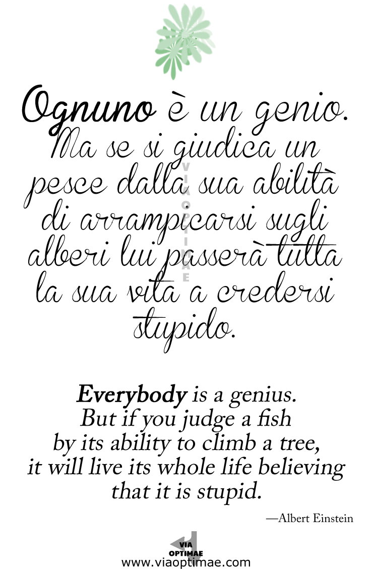 Citazione Quote Albert Einstein Ognuno è un genio ma si giudica un pesce dalla sua abilità di arrampicarsi sugli alberi lui passerà tutta la sua vita a credersi stupido.  Everybody is a genius.  But if you judge a fish  by its ability to climb a tree,  it will live its whole life believing that it is stupid. Via Optimae, www.viaoptimae.com