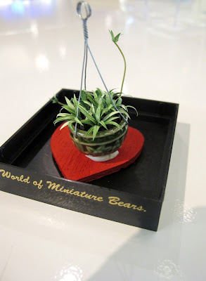 Dolls' house miniature spider plant.