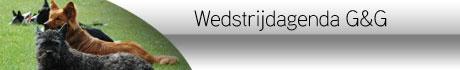 https://www.houdenvanhonden.nl/zoeken/?q=wedstrijd