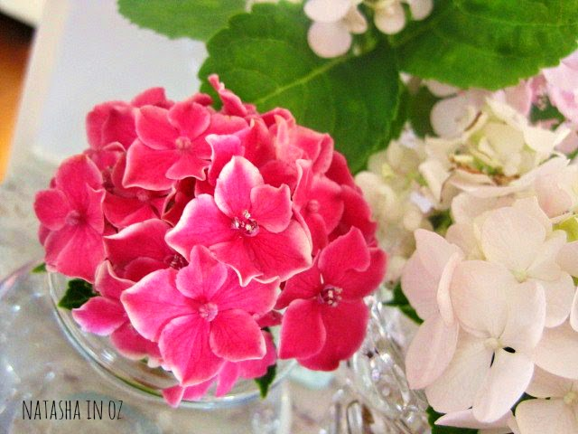 It's the Weekend, pink hydrangeas