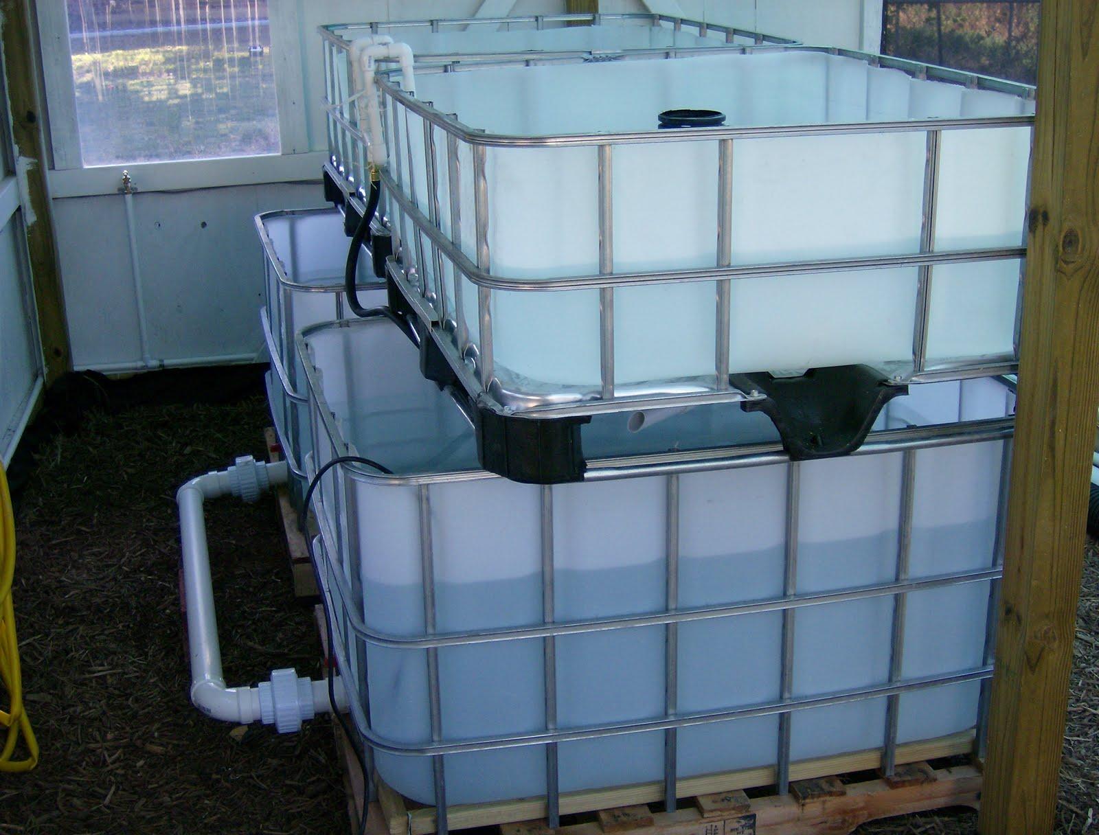 How To Build An Ibc Aquaponics System
