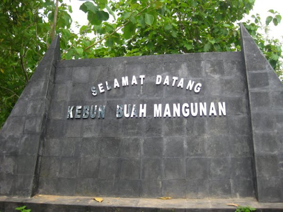 Wisata Alam Kebun Buah Mangunan Bantul Yogyakarta