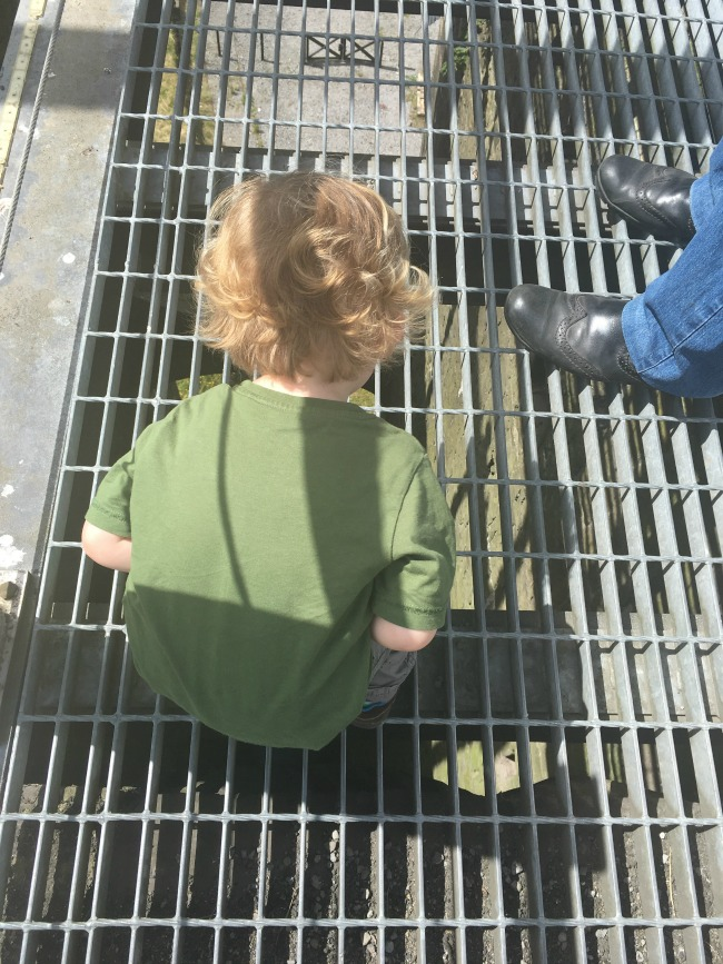 Dinosaurs-Worms-and-Sunshine-blaenavon-ironworks-toddler-looking-through-grid-of-balance-tower.