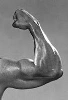 Tepung tapioka bermanfaat untuk otot