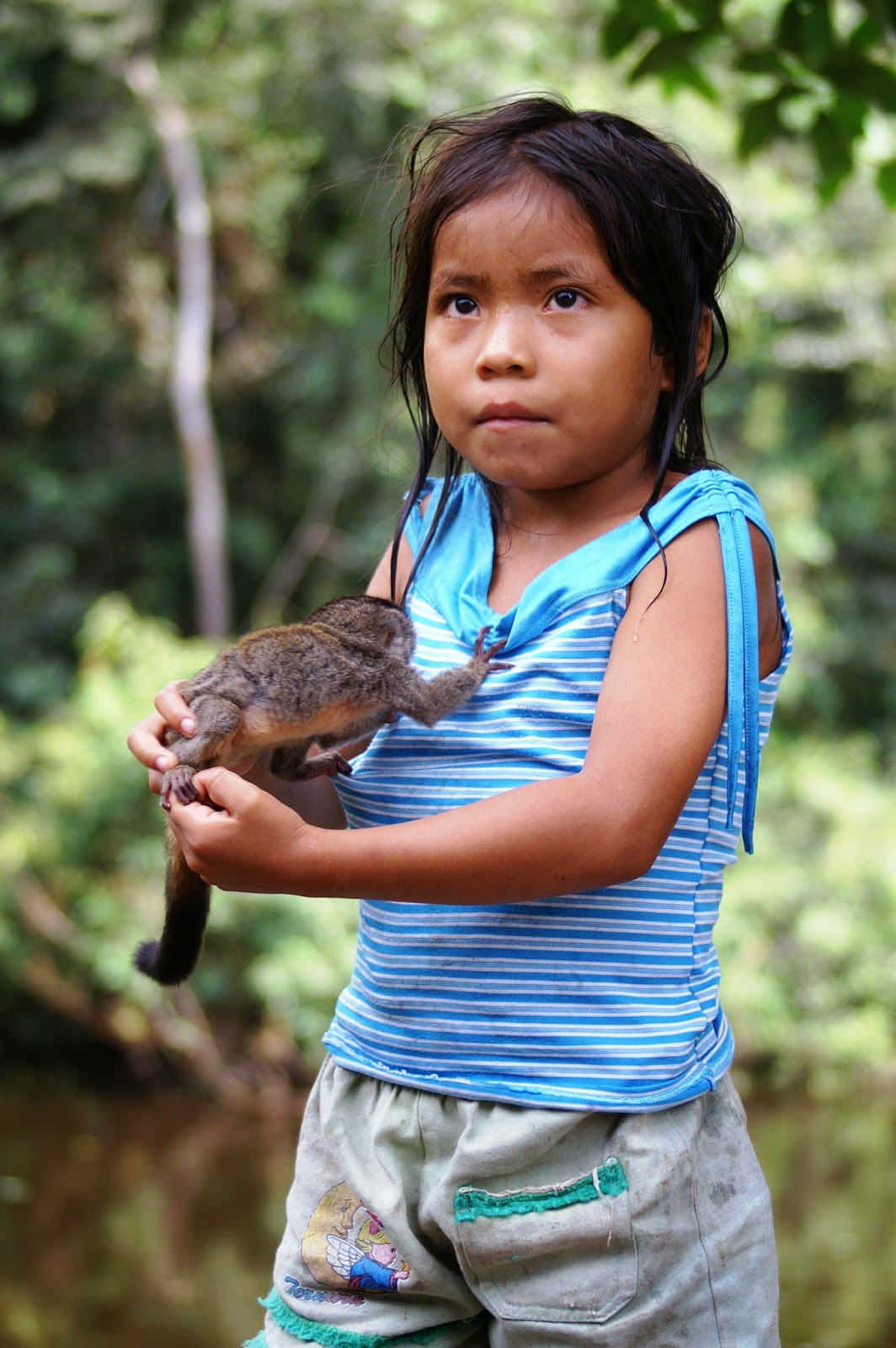 White Wolf 20 Amazing Pictures Of Rainforest People With