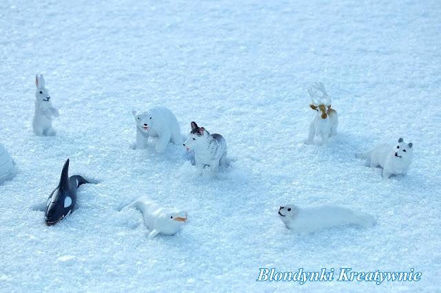 Arktyka smyka Montessori
