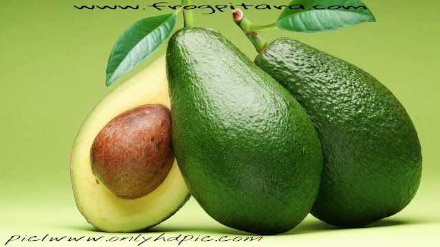Interesting Facts And Information About Avocado In Hindi