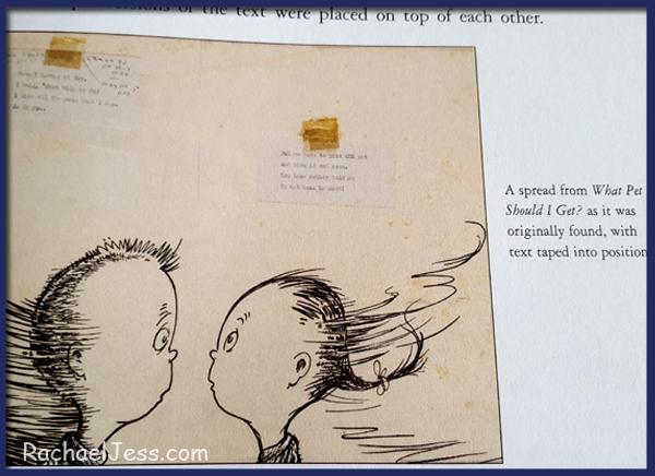 illustrations  from the original artwork for Dr. Seuss What Pet Should I Get