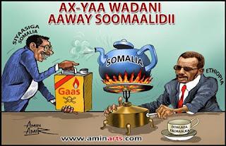 amin arets somali wadani