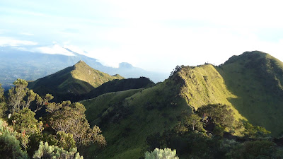 Jalur Pendakian Merbabu Via Selo cocok bagi pemula