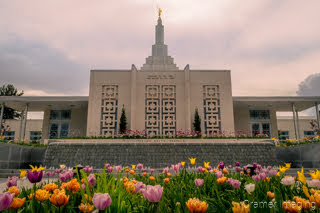 Cramer Imaging's fine art photograph of the Idaho Falls Temple in springtime with tulip flowers in front