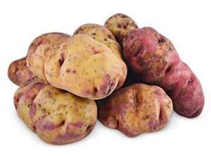 Huayro Potatoe, Potatoes Peru, 3.000 varieties of potatoe, Peru and the potatoe native