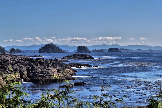 Ucluelet's rugged coastline...