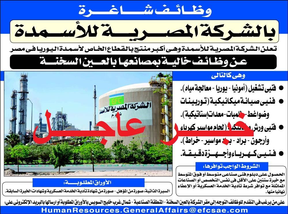 تعلن الشركة المصرية للاسمنت عن حاجتها لشغل عدد من الوظائف للعديد من التخصصات - التقديم على الانترنت