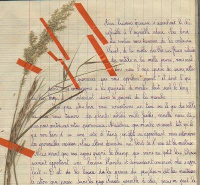 Cahier de classe-promenade de l'école de Toulon-sur-Arroux (collection musée)