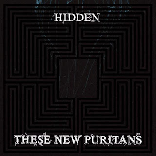 Hidden, These New Puritans, LP Cover