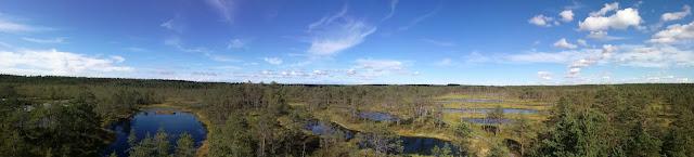 parco-nturale-estonia