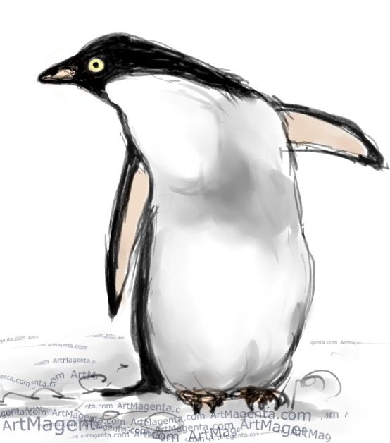 Adelie Penguin sketch painting. Bird art drawing by illustrator Artmagenta