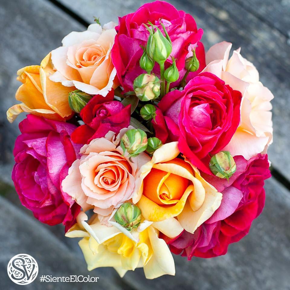Siembras Vision Guatemala Flores Enviar Flores Envio De