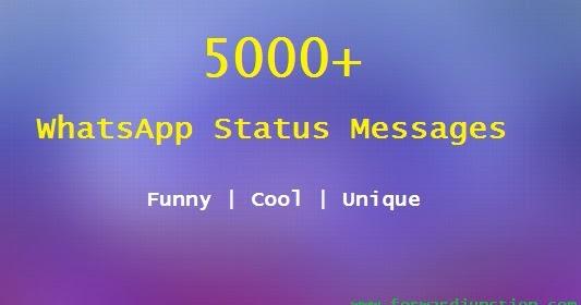 Jogar darwin 4078 online dating