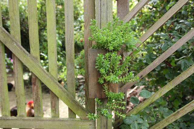 How to make an easy and elegant reclaimed wood hanging planter