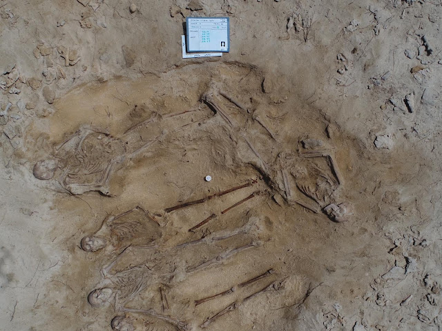 Batavia's mysteries unfold with discovery of mass grave