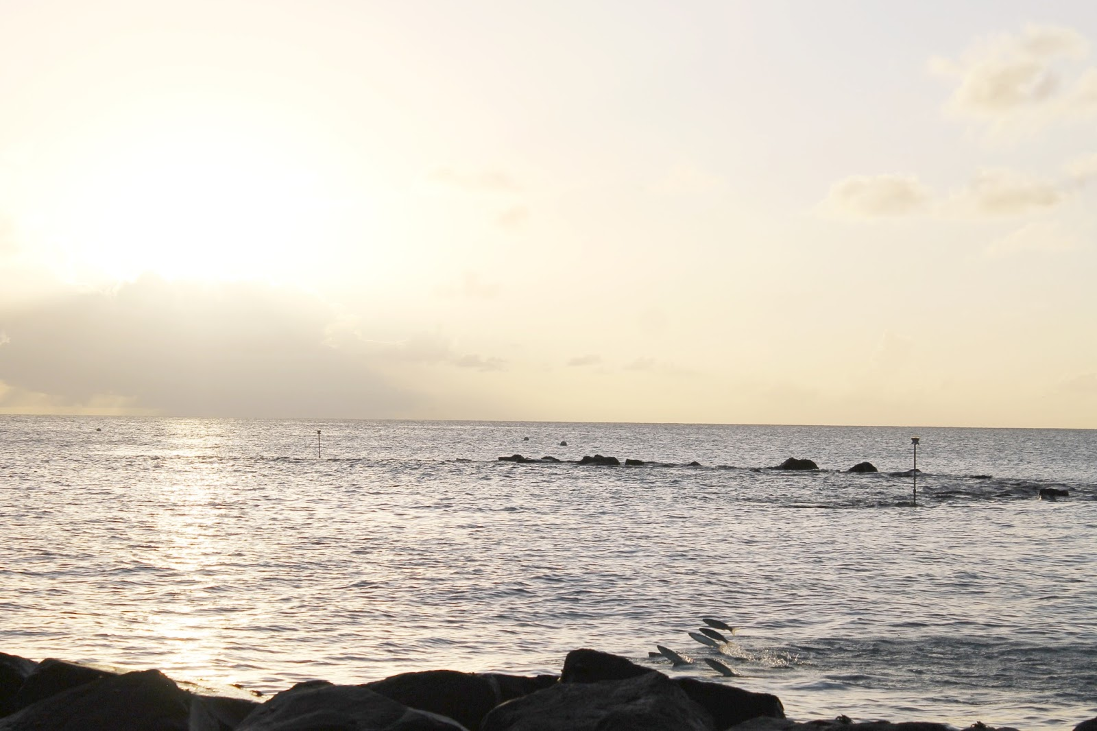 Barbados Caribbean photo diary travel blog