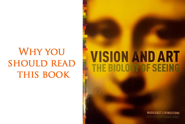VIsion and art the biology of seeing book review