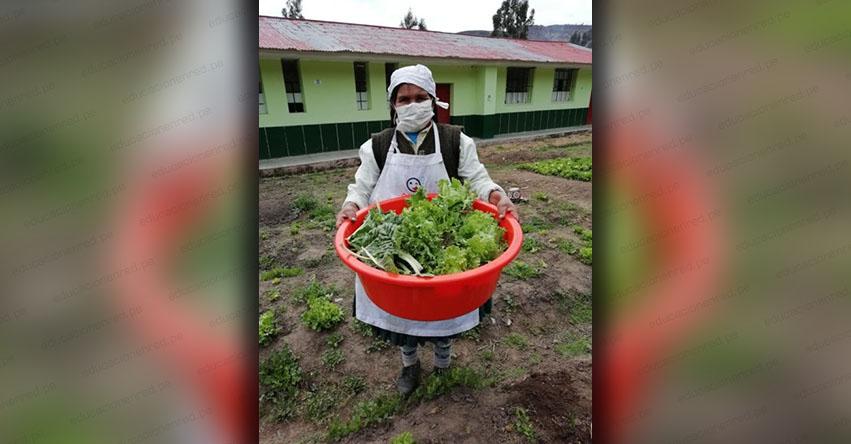 Qali Warma ofrece su servicio alimentario a 13 mil 920 estudiantes en la provincia de Chumbivilcas en Cusco - www.qaliwarma.gob.pe