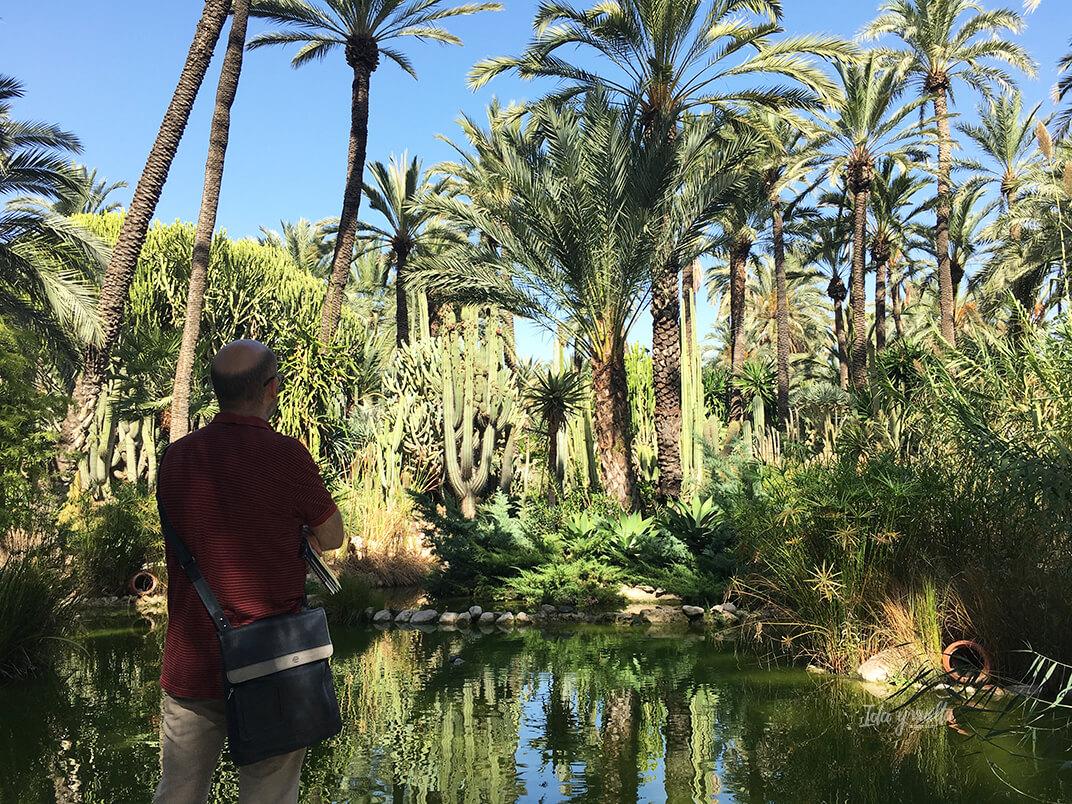 Palmeras, cactus y estanque