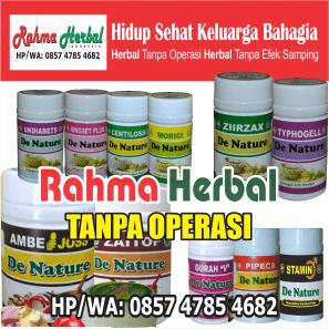 obat herbal rahma, obat rahma herbal, obat rahma herbal denature, obat rahma herbal apotik