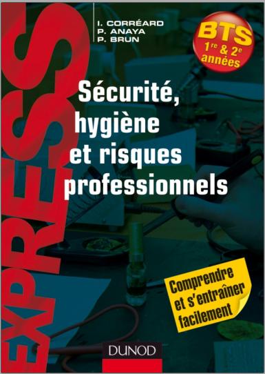 Livre : Sécurité, hygiène et risques professionnels - Patrick Brun PDF