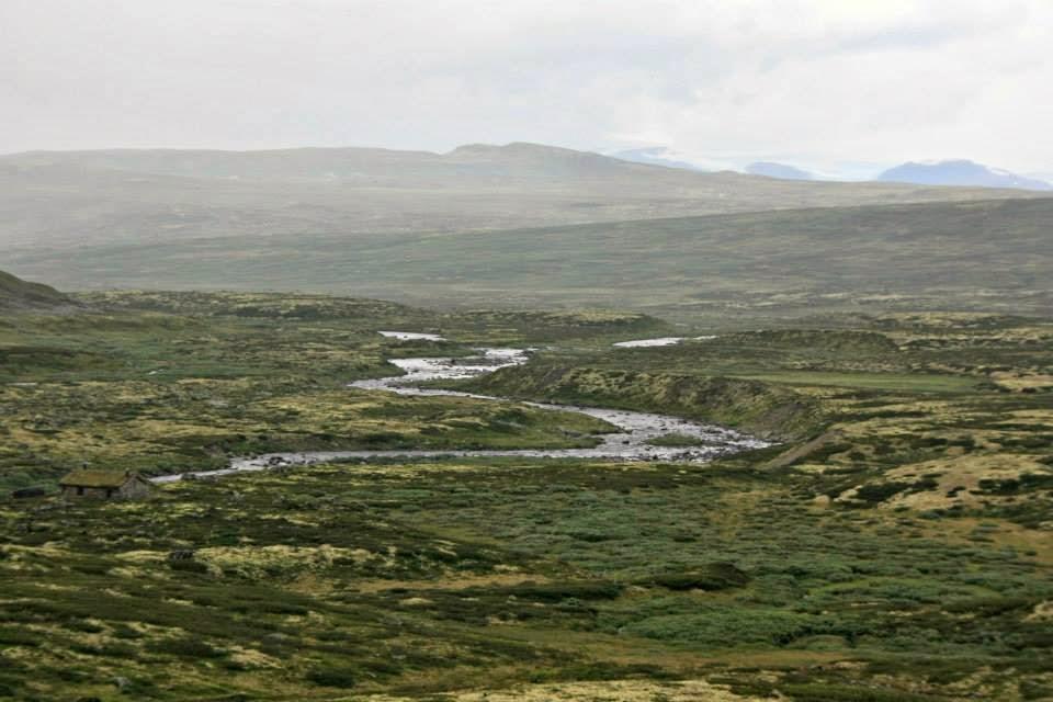Paisaje clásico de la meseta de Hardangervidda.