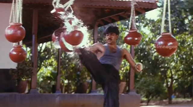 Martial arts stunts in Telugu movies Tollywood