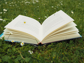 geoeffnetes-buch-open-book