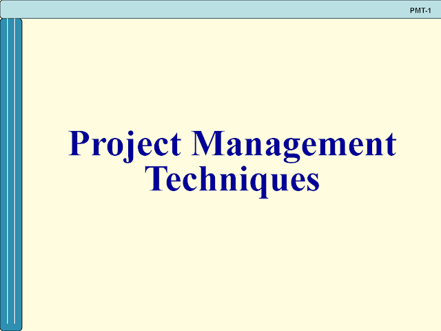 Download The Basics of Project Management Techniques pdf