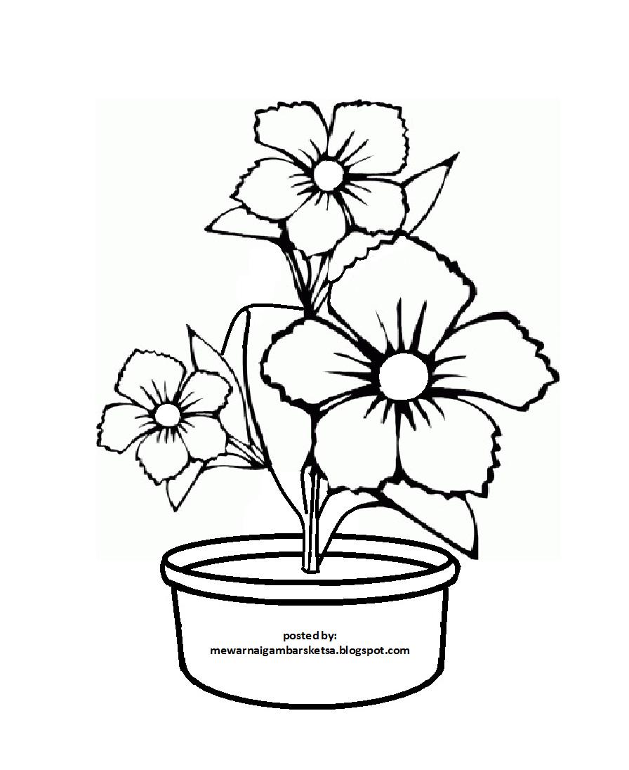 Download Sketsa Gambar Pot Bunga