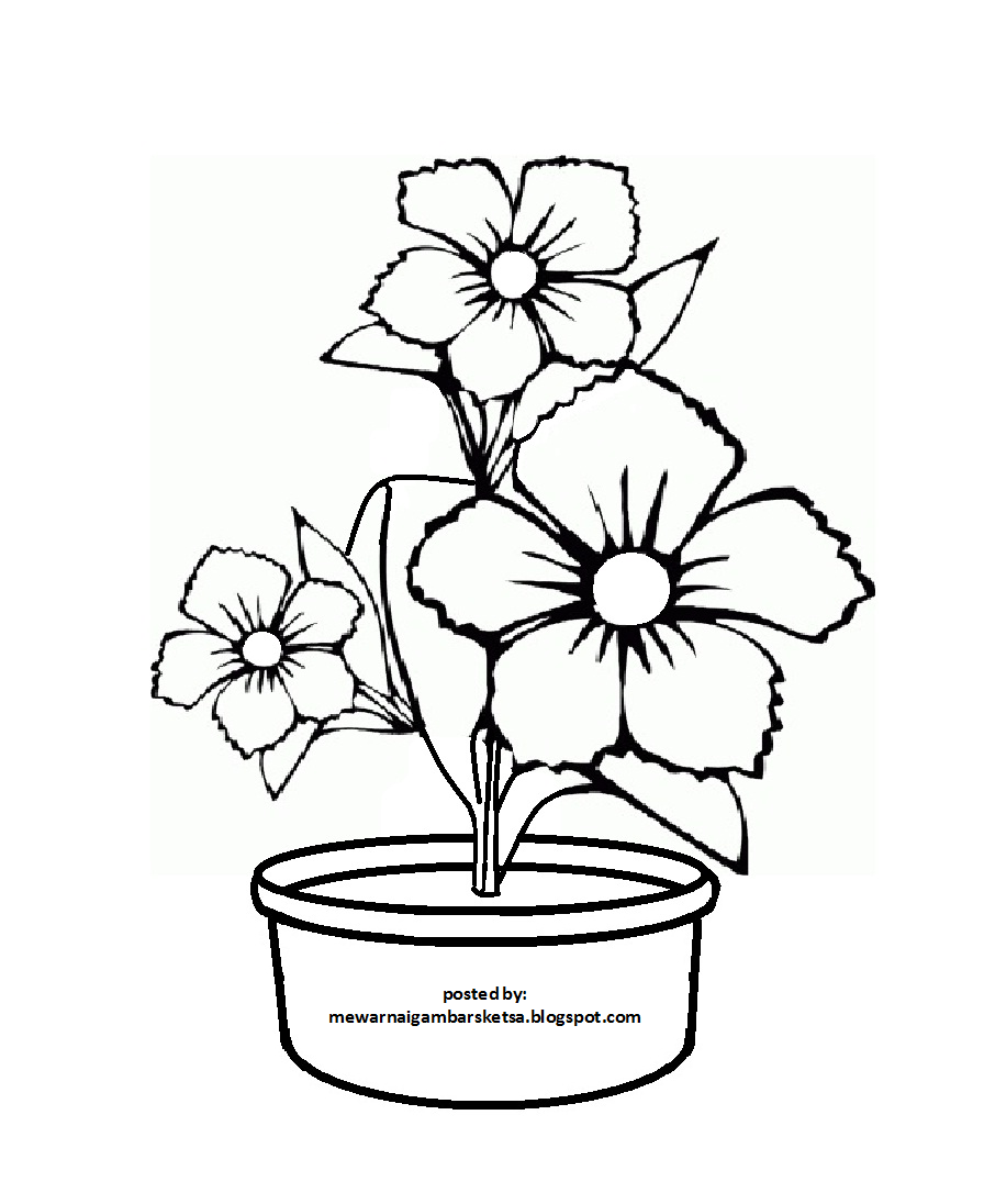 60 Sketsa Gambar Bunga Dalam Pot Terbaru Duniasket