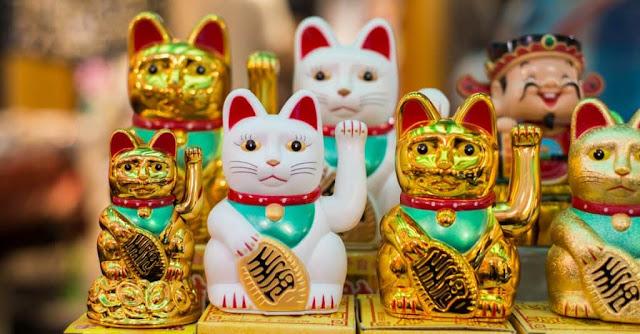 Apakah Benar Kucing Melambangkan Keberuntungan?