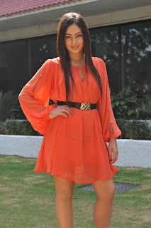 Actress Nikisha Patel Hot in Orange Dress