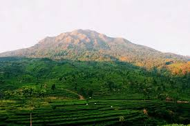 Gunung Ungaran (2.050 MASL)