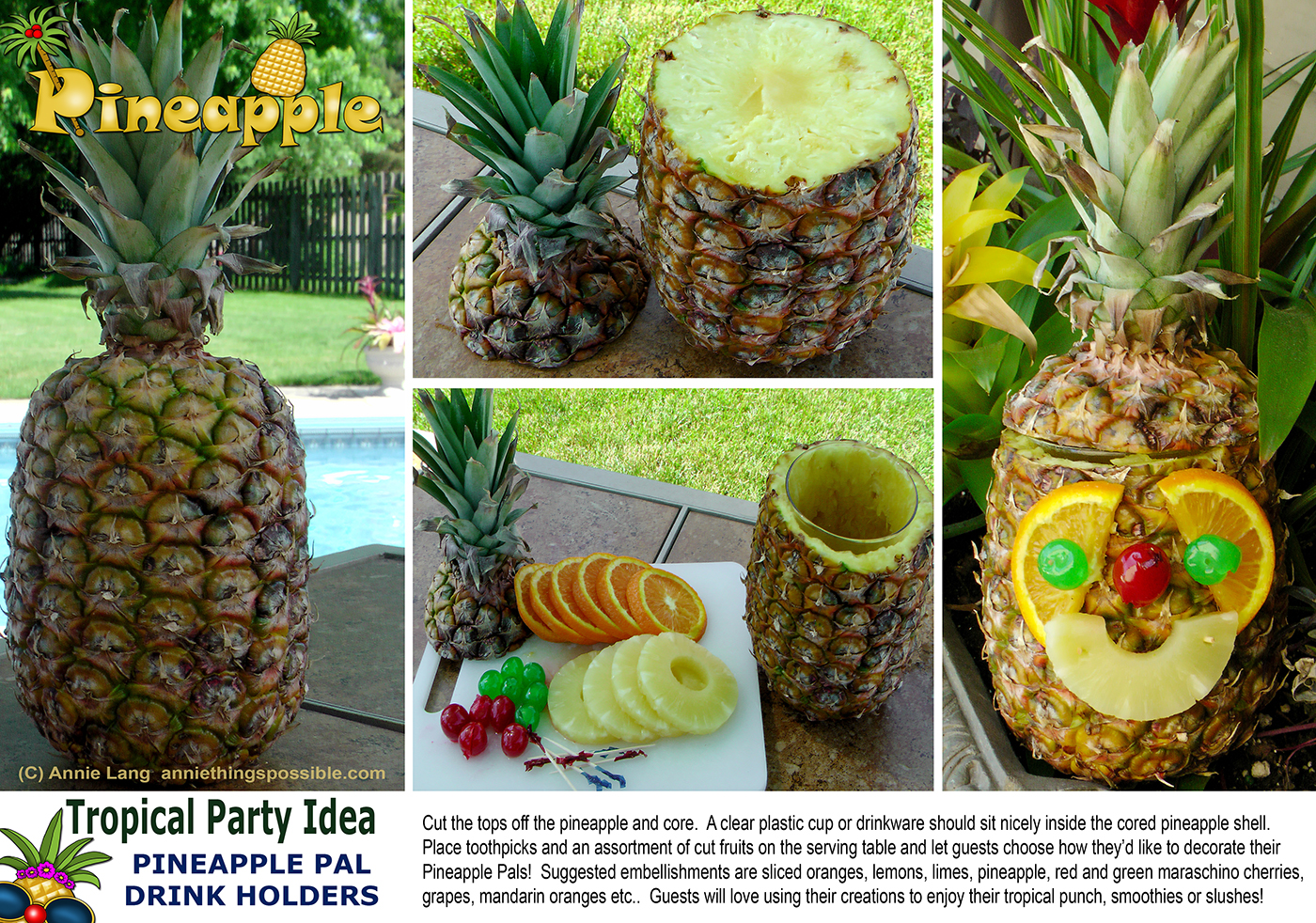 Quick Fun Easy Way To Liven Up Your Tropical Themed Gatherings