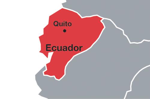 Ecuador import data