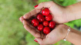 Wallpaper: Hands Filled with Red Cherries