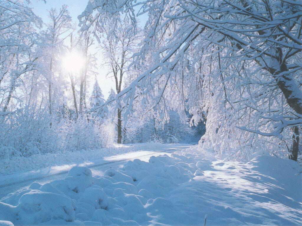 snow landscape backgrounds - photo #3